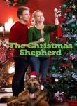 Buddy, il pastore di Natale